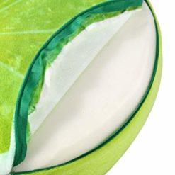 coussin fruit citron vert
