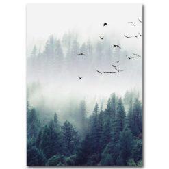 affiche nature et oiseaux